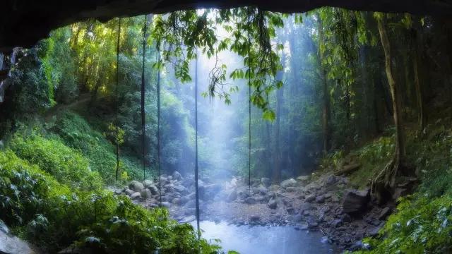 海南岛热带雨林_海南热带雨林徒步穿越户外活动召集2016
