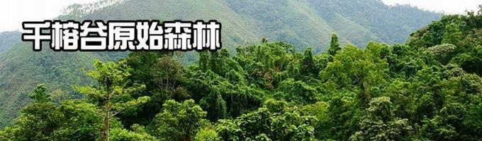 [转载]海南三亚海岛生存雨林生存之旅(无人岛屿+原始雨林)